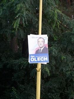olechsenator.jpg